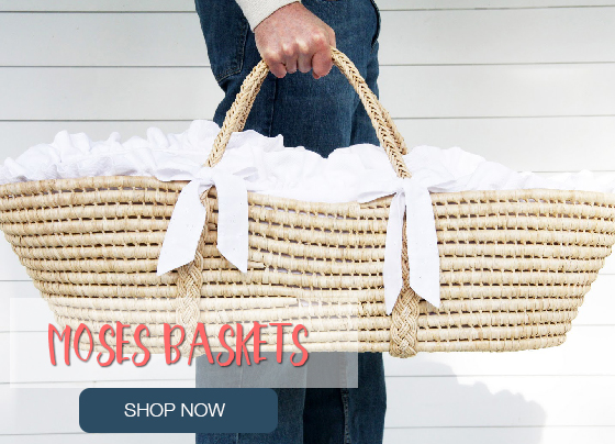 moses basket front 2016