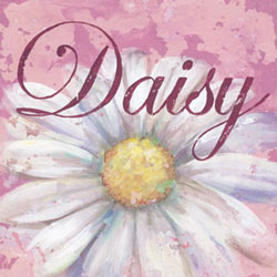 Daisy Stretched Art
