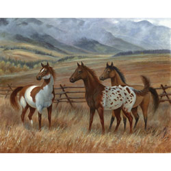Appaloosa II Wall Art
