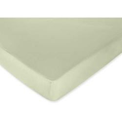 Ladybug Parade Fitted Green Sheet