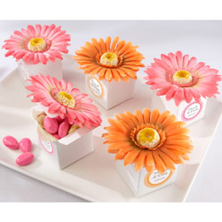 Kate Aspen Daisy Delight Favor Boxes (Set of 24)