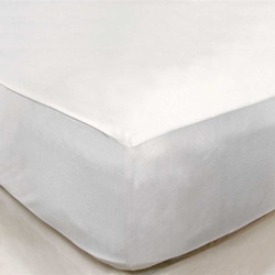 Mattress Safe LLC Classic Fit Twin Mattress Protector
