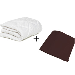 Bassinet Mattress Protector and Sheet Combo