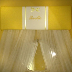 Personalized French Princess Canopy