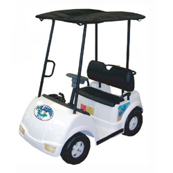 Big Driver Two Seat Golf Cart