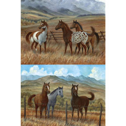 Appaloosa Series Wall Art