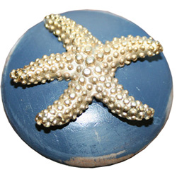 Starfish Drawer Knob