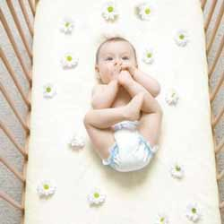 Stay-On Organic Cotton Crib Sheet
