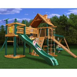 Pioneer Peak Swing Set
