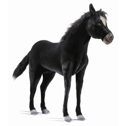 Ride-On Plush Black Pony