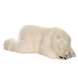 Large Plush Sleeping Polar Bear Cub