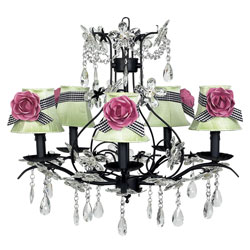 Jubilee Cinderella Pink Rose Set of 5 Shades