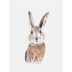 Baby Rabbit Canvas Art