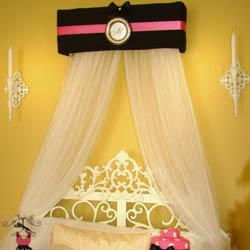 Princess Hot Pink and Black Canopy