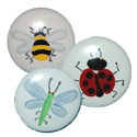 Bug Knobs, Frogs And Bugs Nursery Decor | Frogs And Bugs Wall Decals | ABaby.com