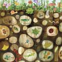 Underground Exploration Stretched Canvas, Frogs And Bugs Themed Nursery | Frogs And Bugs Bedding | ABaby.com