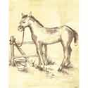 Toile Horse Canvas Wall Art