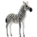 Ride-On Plush Adult Zebra, African Safari Themed Nursery | African Safari Bedding | ABaby.com