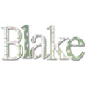 Blake's Pattern Wall Letters, Kids Wall Letters | Custom Wall Letters | Wall Letters For Nursery