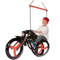 Motorcycle Tire Swing