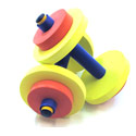 Fun and Fitness Dumbbells